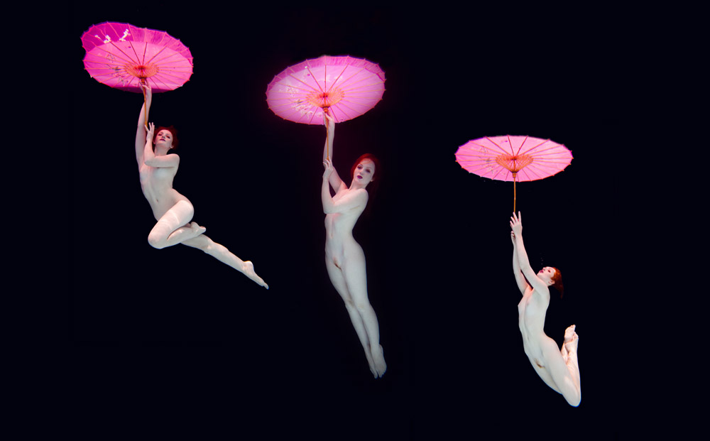 Ivory Flame by Chris Meredith Ivory Flame Underwater Parasol 2 1000  Underwater